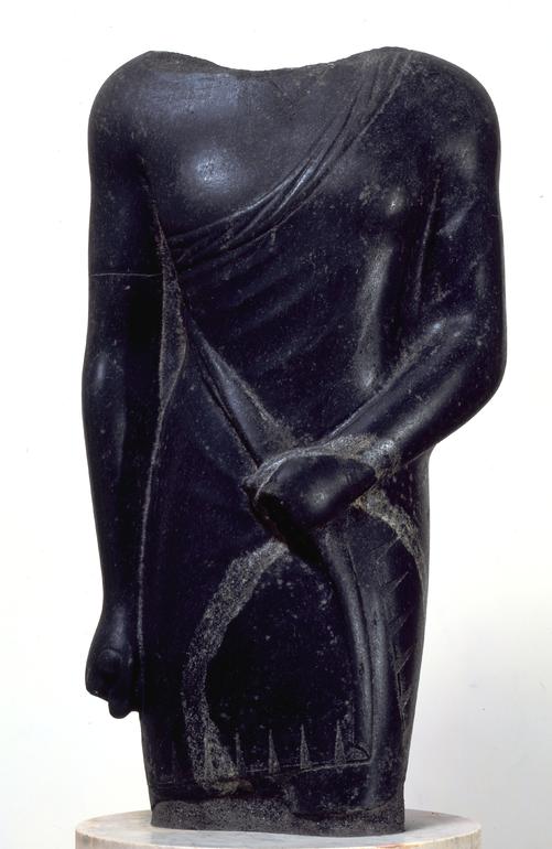 Virile torso