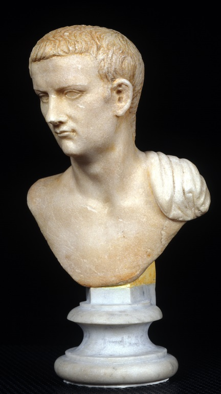 Small bust of Caligula
